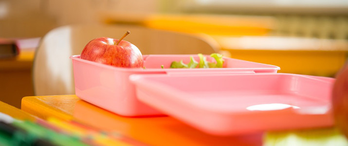 kids healthy school lunch, planning healthy school lunches